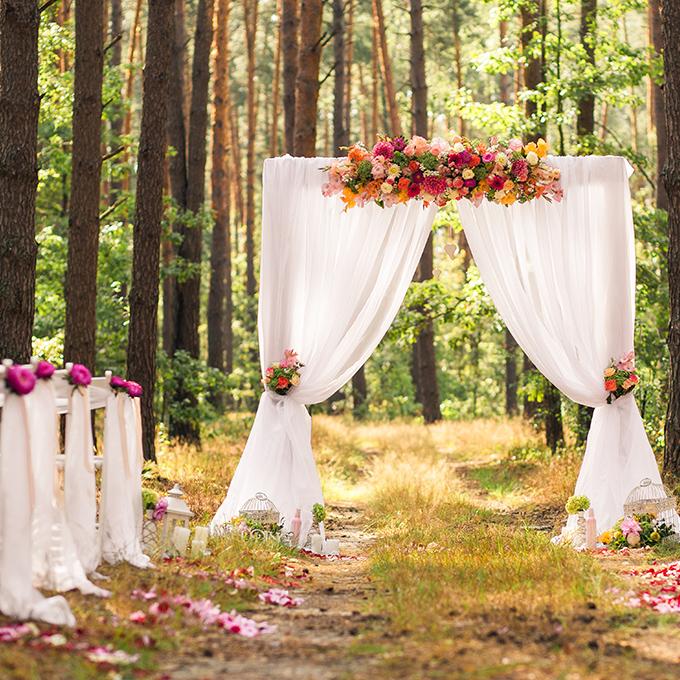 Hochzeitsplaner Hochzeit Zeremonienmeister